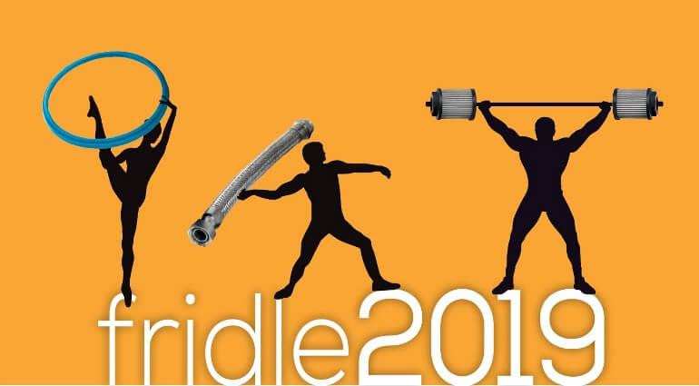 Fridle Group - 2019